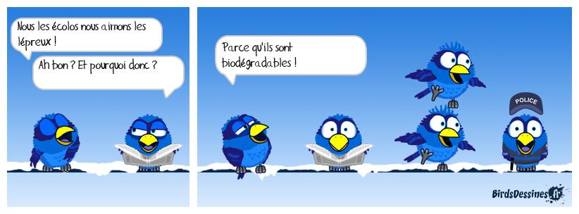 Bird Ensemble, The - Migration