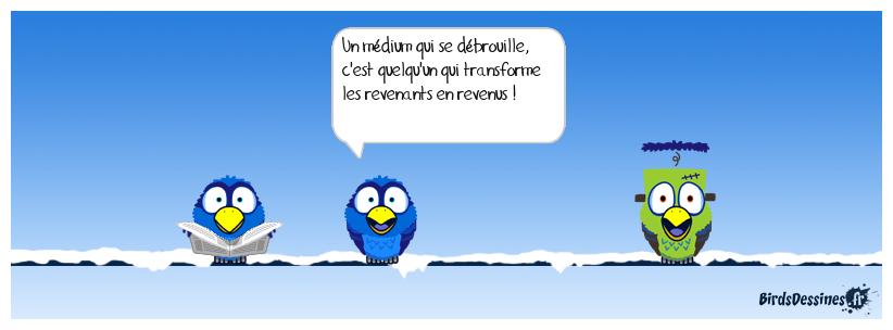 LE MÉDIUM DÉBROUILLIARD
