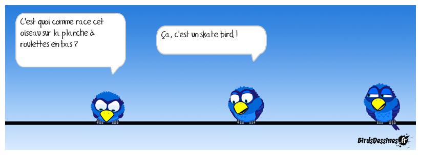 Une nouvelle race d'oiseau