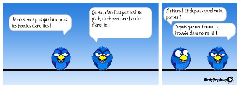 LA BOUCLE D'OREILLE