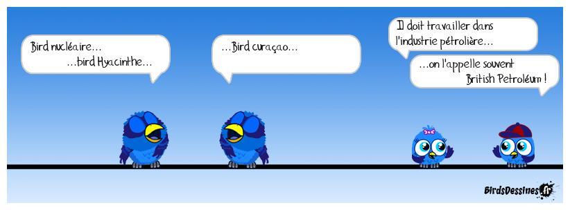 Poésie devinette d'un bird #26