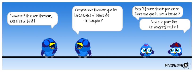 Poésie devinette d'un bird #27