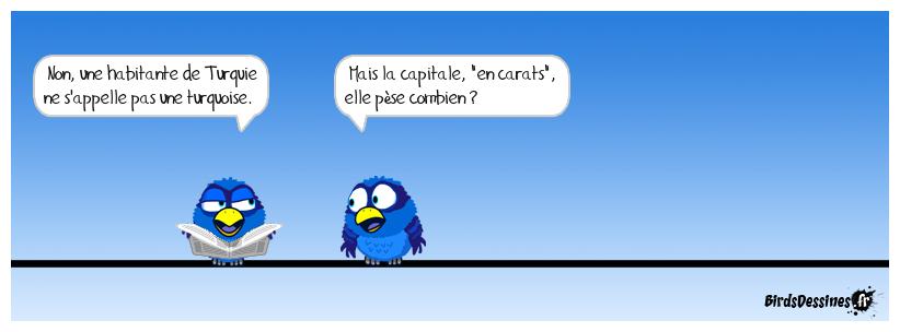 Je voudros augminter m'collection - Page 3 Blue-parrot_putsch-toi-dla-que-jmy-mette_1468645137