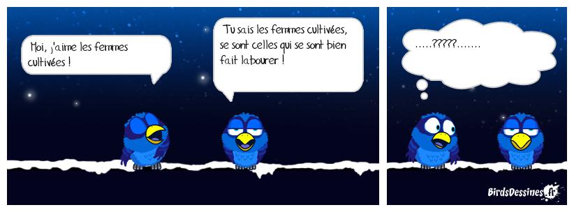 L'AMOUR DES FEMMES CULTIVÉES