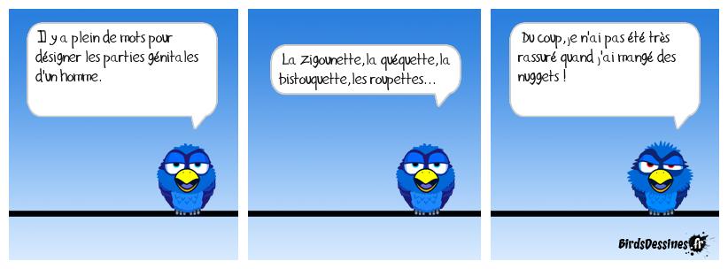 L'intimité d'un bird