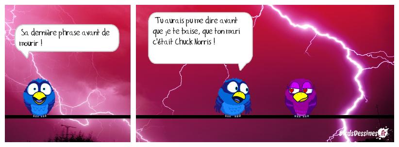 SA DERNIÈRE PHRASE AVANT DE MOURIR