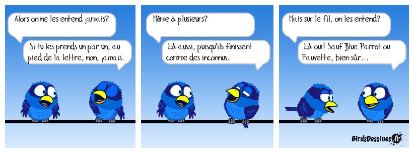 Devinette pour les Birds
