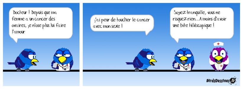 LE CANCER DES OVAIRES