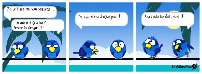Tigrou et les oiseaux ...