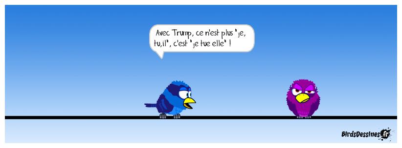Les pronoms selon Trump