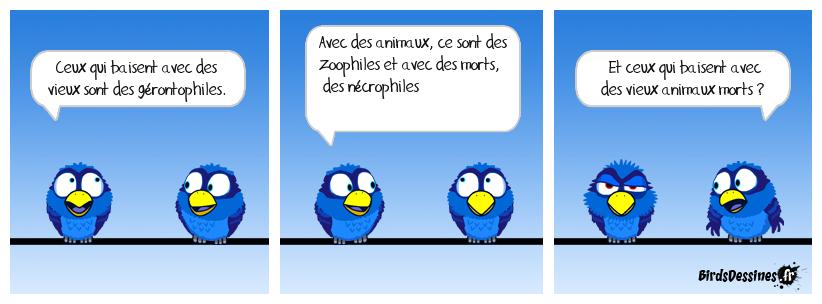 Birdophile