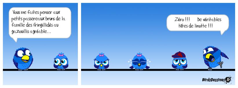 Zéro !!! Ouvrez ouvrez la cage aux oiseaux...