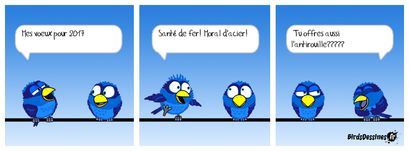 Voeux 2017 des birds
