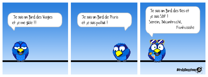 La vie de Bird