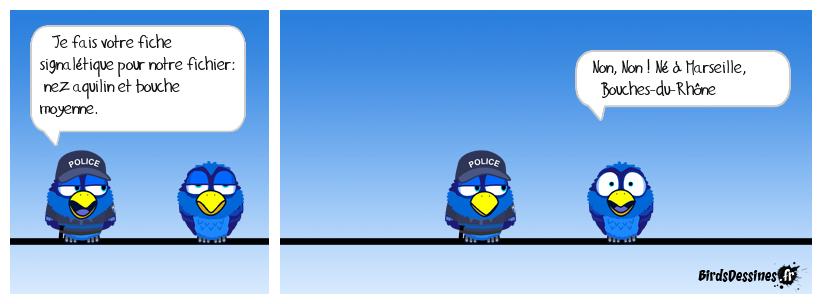 La fiche de police