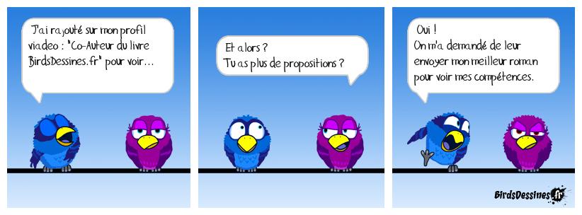 Profil Viadeo et BirdsDessines :)
