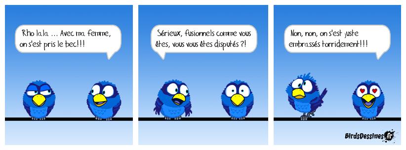 Noms d'oiseaux !