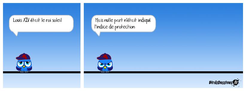 l'histoire vue par les birds