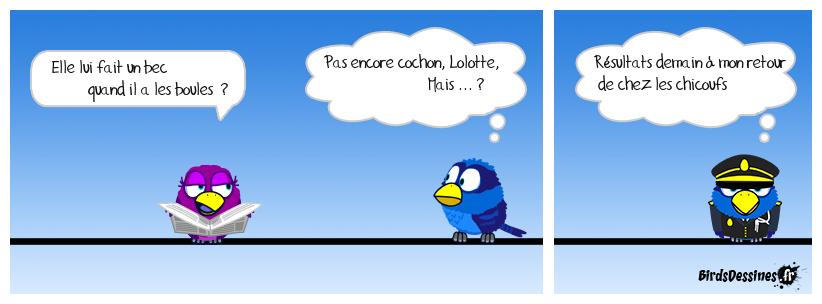 ♫ Le verbiquet pour Lolotte ♫ 11 ♫