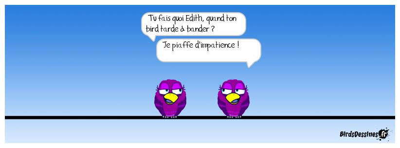 le petit oiseau va sortir (ou pas) !