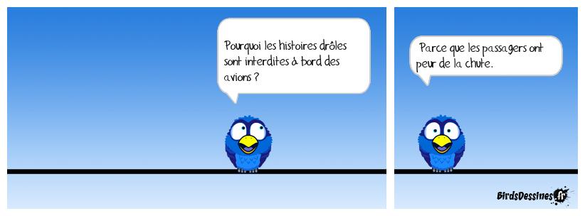 Carlingue