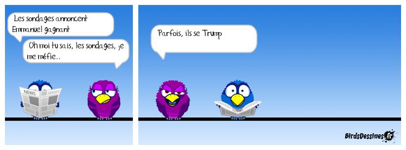 sondages, sondages