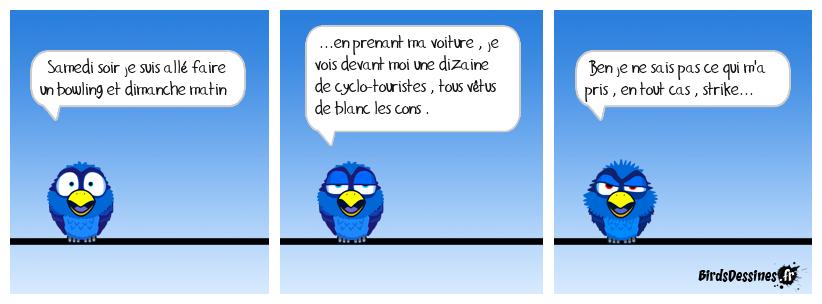 Les Birds Dessinés - Page 4 Dorlett_les-boules_1497863528