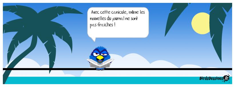 Canicule (suite)