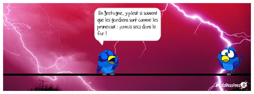 Bretagne@météo