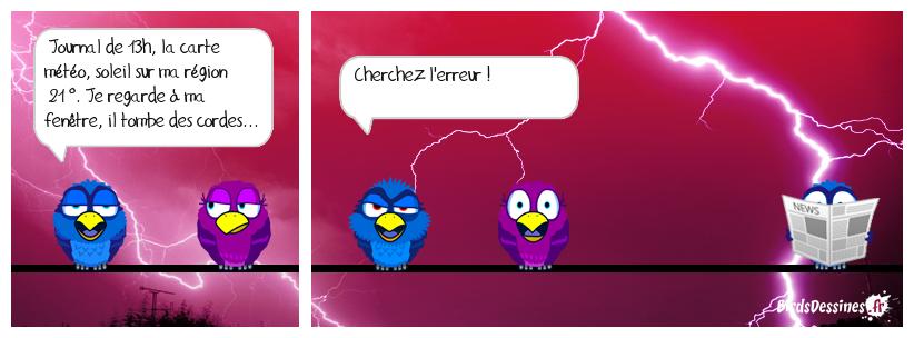 CHERCHEZ L'ERREUR