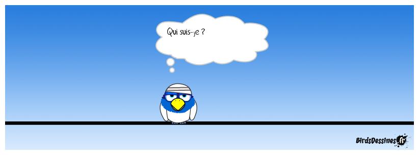 Devinette pour un Bird...!!