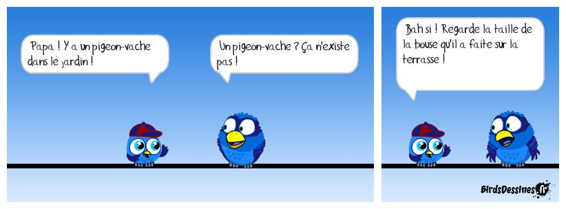 Pigeon-vache
