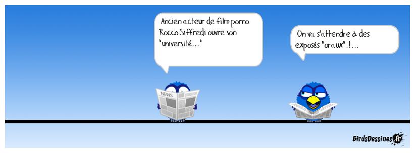 Rocco ouvre son université !