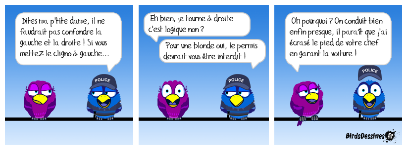 Logique de Blonde♥