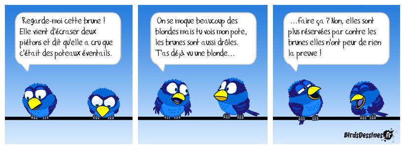 Y a pas que les blondes♥