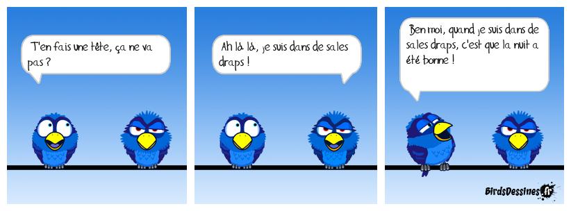 Sales draps