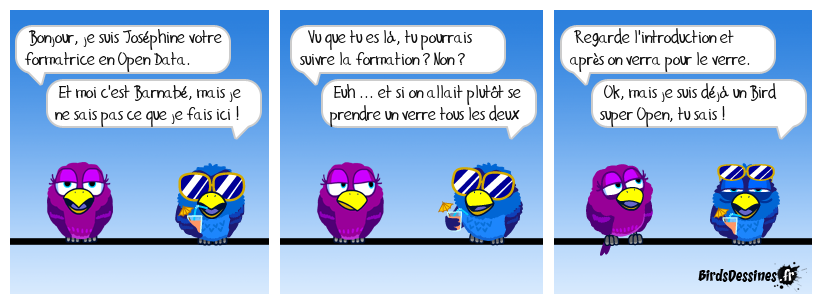 Formatrice Open Data