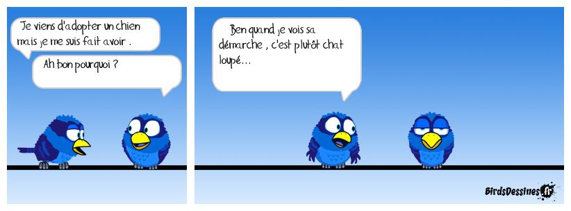 Bd ouaf miaou...!!