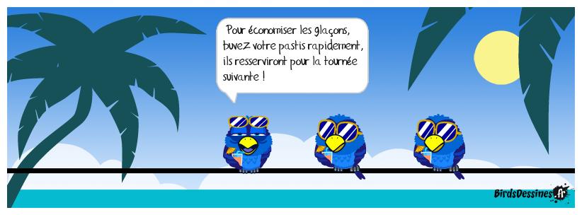 LA PENSÉE DU JOUR DE MISTER BLUES...6