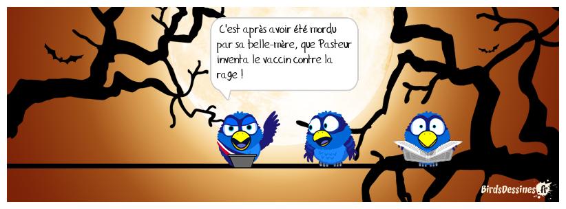FAIT HISTORIQUE D'APRÈS MISTER BLUES...1