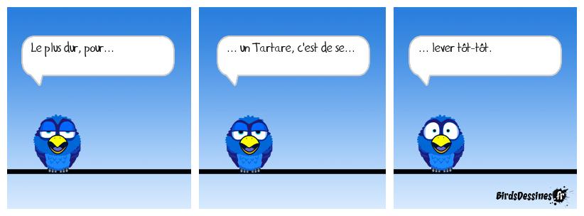 Histoire de Toto le Tartare.