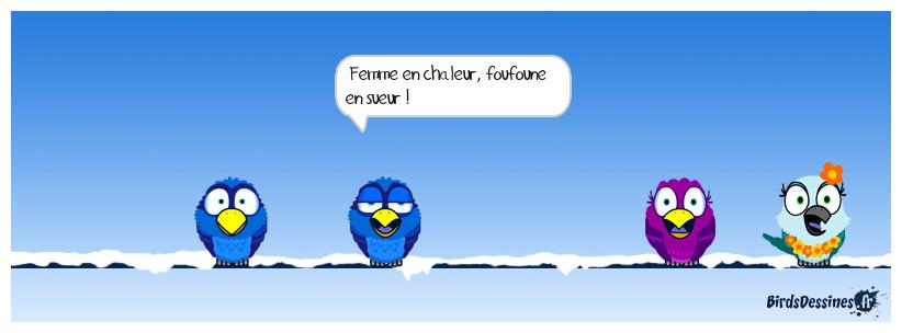 LA PENSÉE DU JOUR DE MISTER BLUES...10