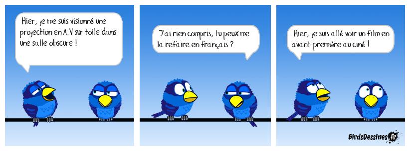 Le bird cinéphile