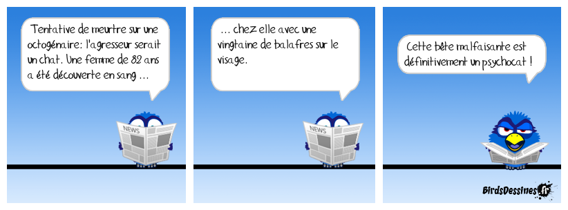 Chat-loperie !