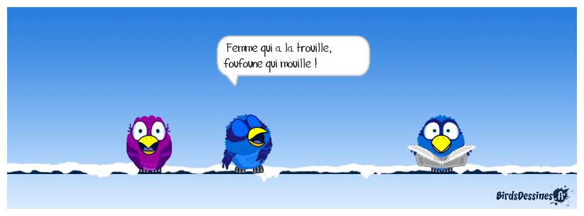 LA PENSÉE DU JOUR DE MISTER BLUES...16