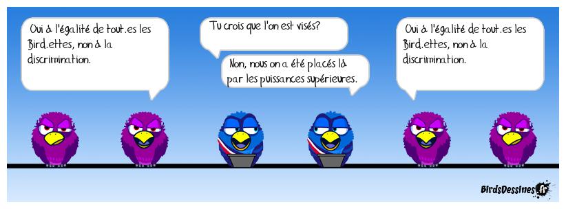 Bird.scrimination