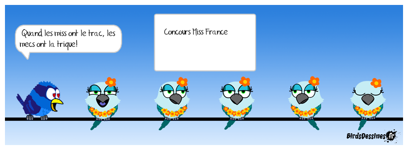 concours miss france