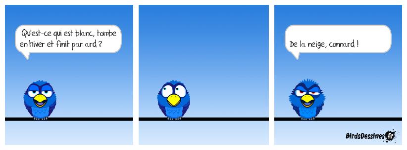 Le crapaud et la colombe