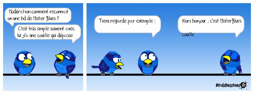 Les Birds pour les nuls : aujourd'hui Mister Blues...!!