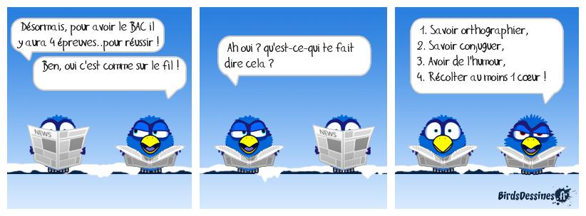 ♪♫ Ouvrez, ouvrez la cage aux oiseaux ! ♫♪